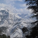 Дармсала или Индия зимой