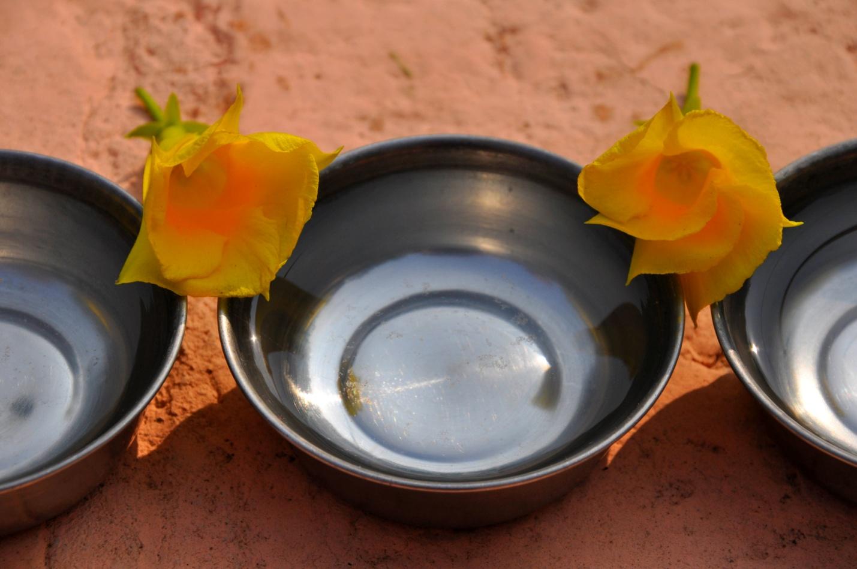 Цветки в Бодхгая, Индия
