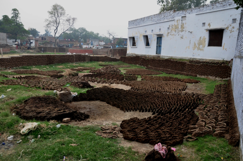 Коровьи лепешки во дворе, Сарнатхе, Индия