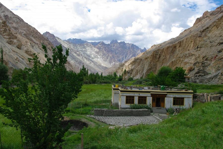 Зеленая природа в горах Гималаи, Индия
