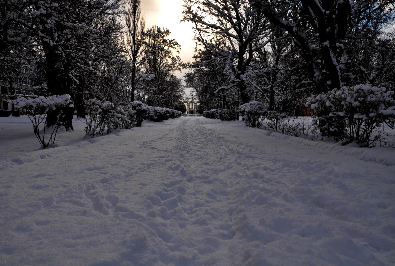 Аллея парка имени Войкова, Керчь. Крым