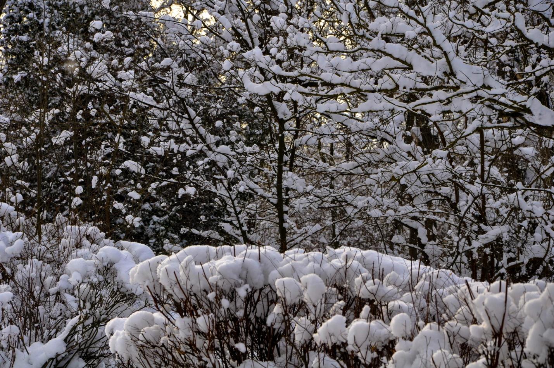 Снежный парк в Керчи, Крым