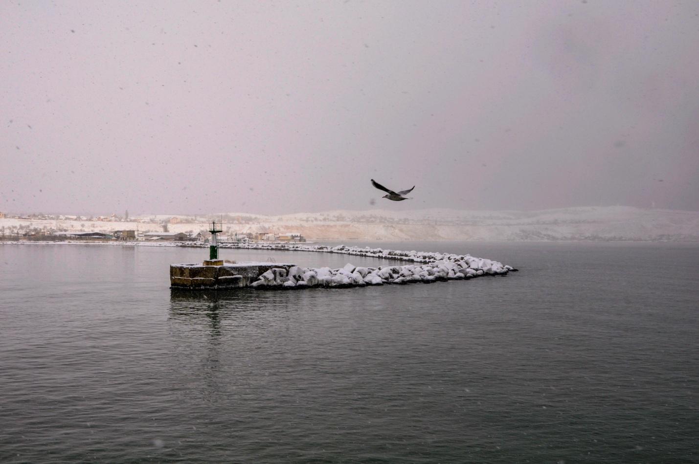 Чайка и Керченский пролив зимой. Крым