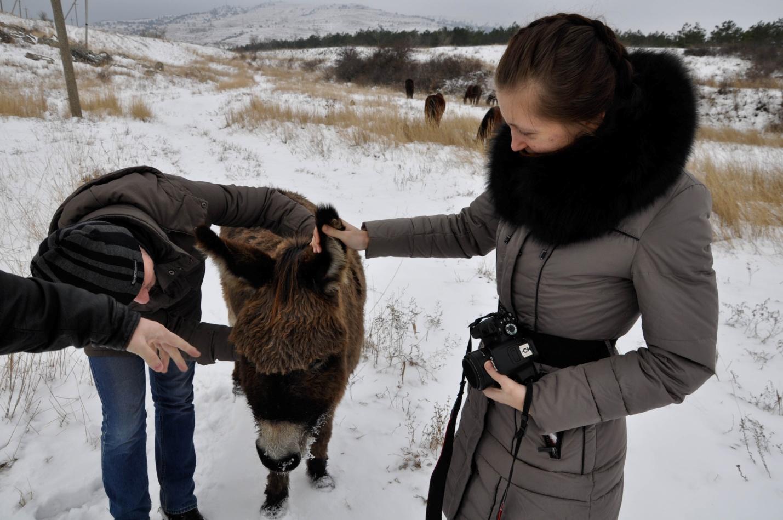 Ослик и команда Travel-Bug Club. Зима. Крым