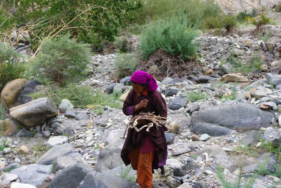 Женщина в горах, Гималаи, Индия