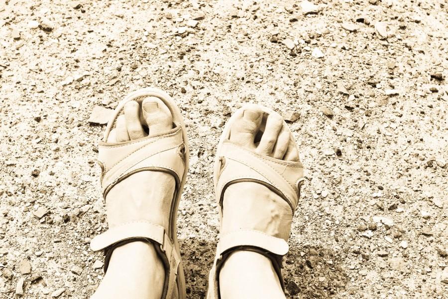 Ноги путешественницы