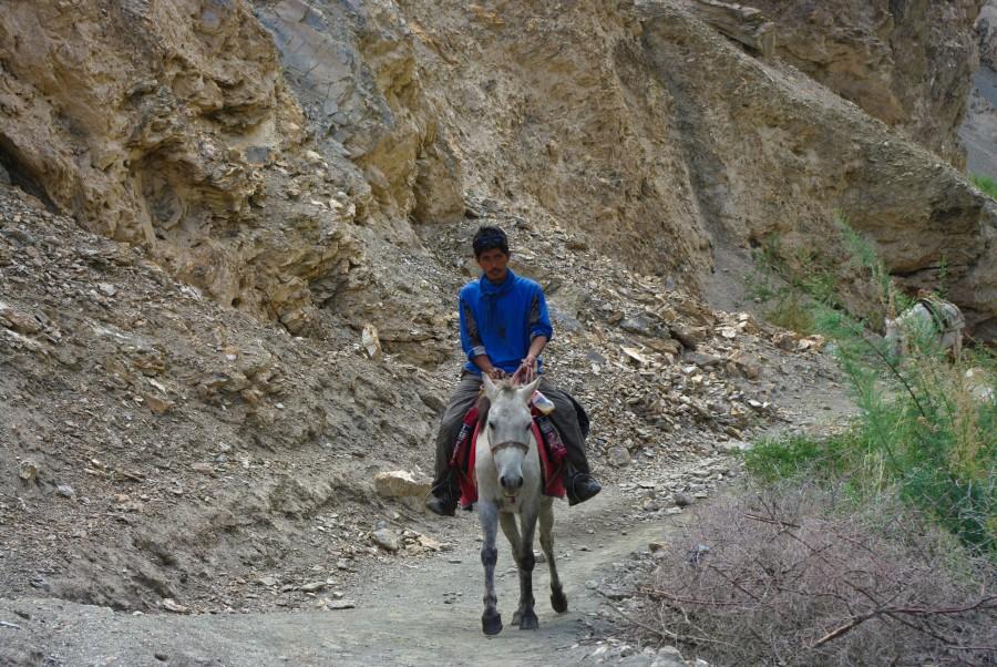 Индус на лощади в горах
