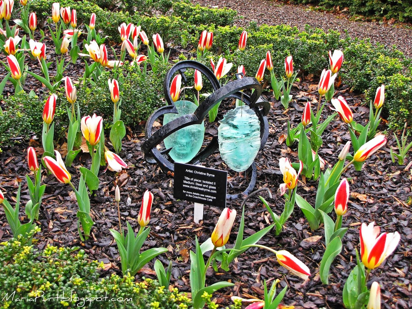 Сад в Бларни, Ирландия