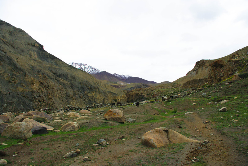 Горная тропа в Ладакхе, Гималаи