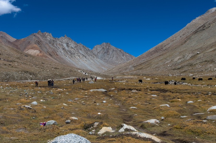 Тропы и путешественники в горах
