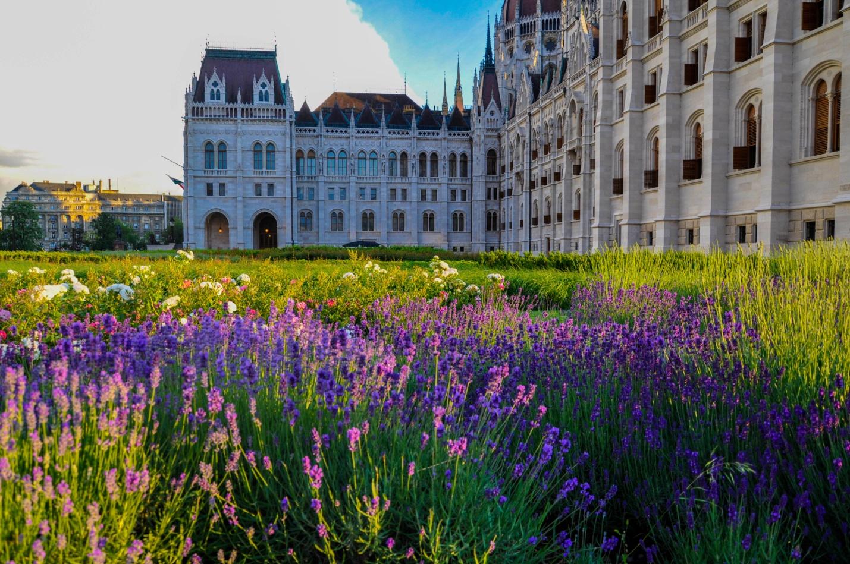 Цветочные клумбы около Здания Венгерского парламента, Будапешт