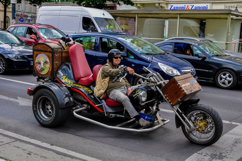 Необычный байкер с собакой на улице в Вене, Австрия