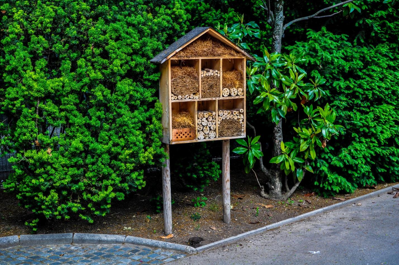 Скворечники для птиц в парке Вены, Австрия