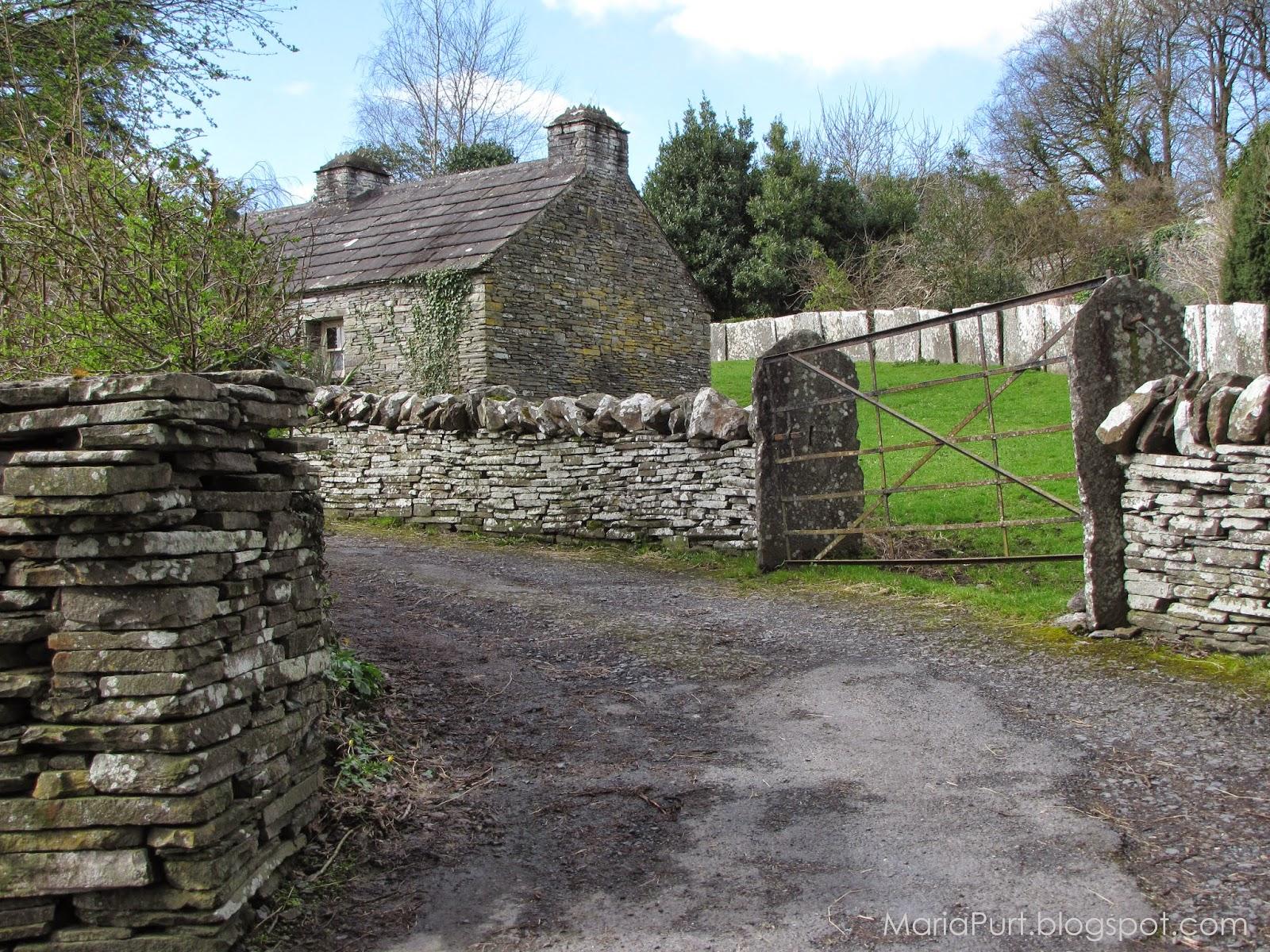 Деревня около замка в городе Бунратти, Ирландия