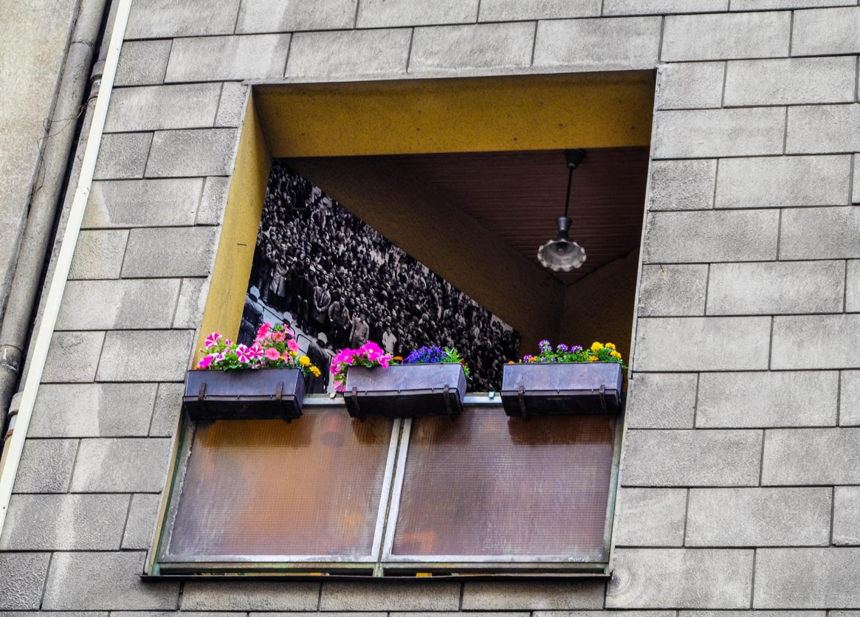 Окно в Будапеште