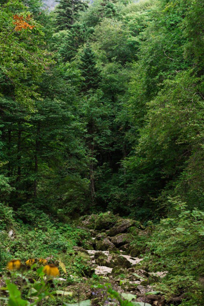 Русло реки около водопада Фишт, Водопадистый
