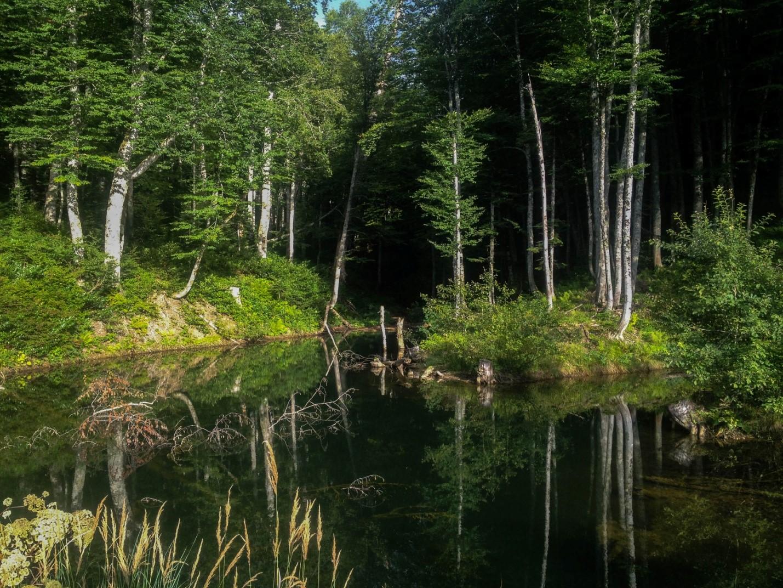 Озеро как из русских сказок по пути к Водопадистому, Краснодарский край, Кубань