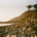 Потаенные уголки Кубани: дикий пляж в Виноградной