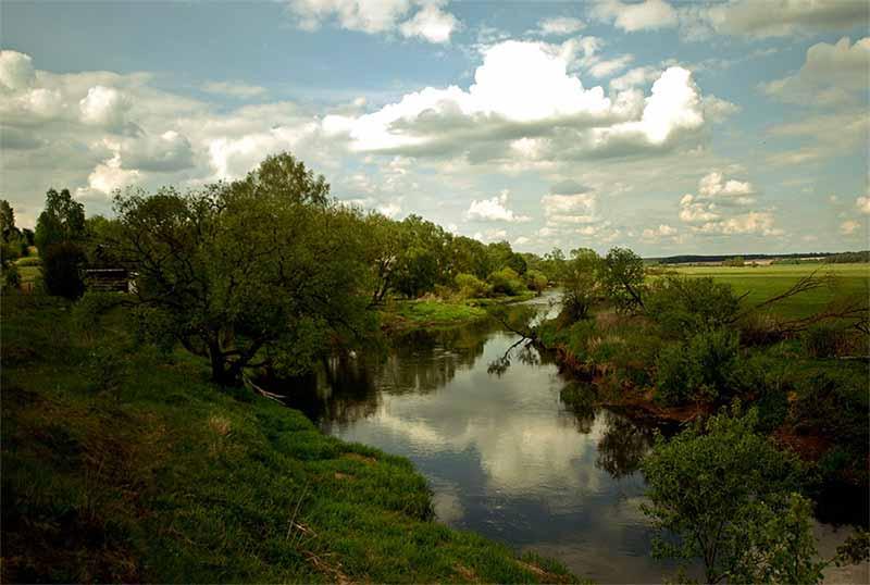Река, поля, зелень