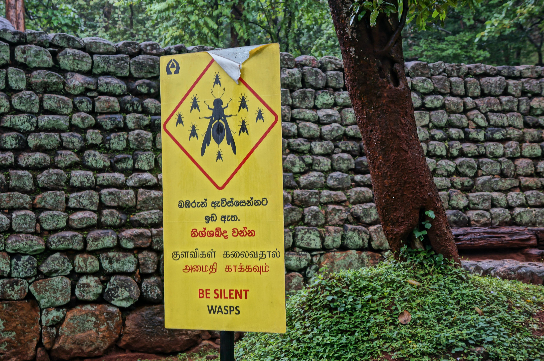 Знак предупреждающий об опасных осах, Цейлон, Шри-Ланка