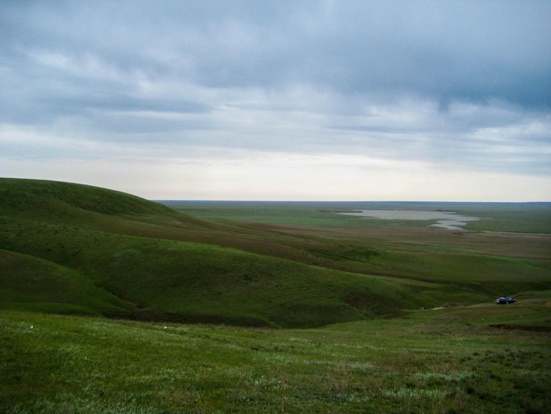 Зеленая Калмыцкая степь