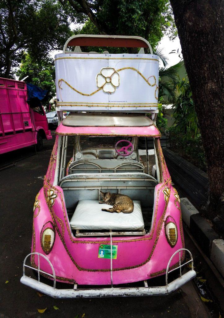 Кот в розовой машине hello kitty