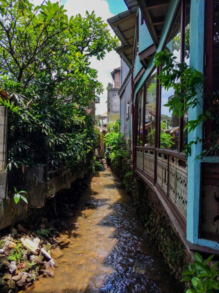 Узкая речка в городе Убуд, Бали