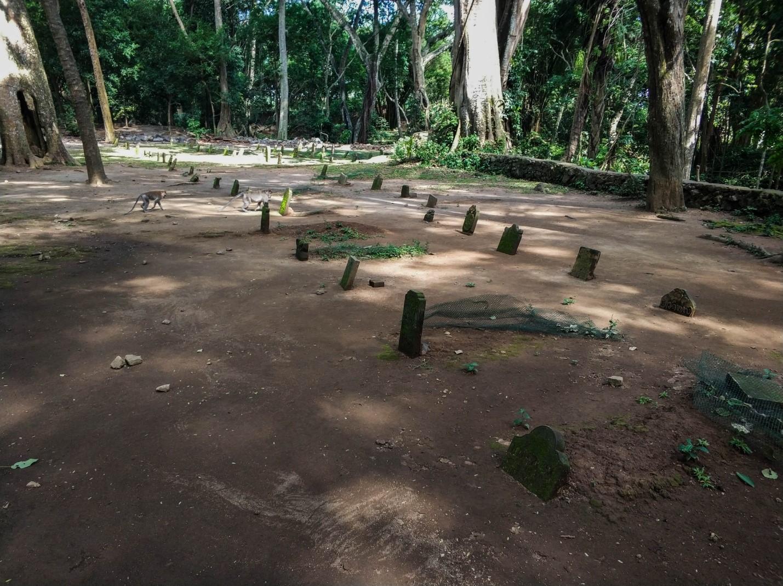 Кладбище в Храме обезьян в Лесу обезьян, Бали