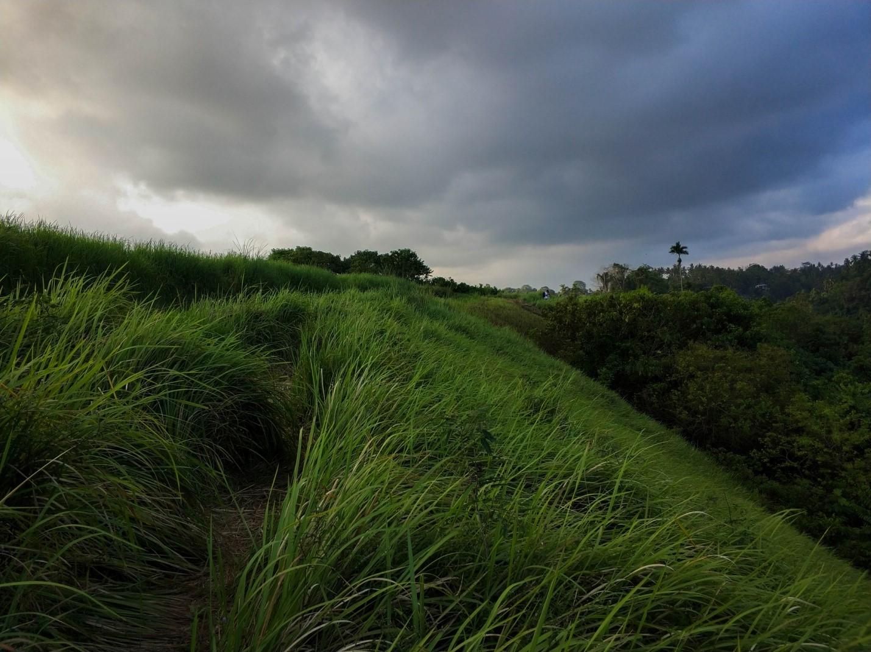 Тропа художника на острове Бали