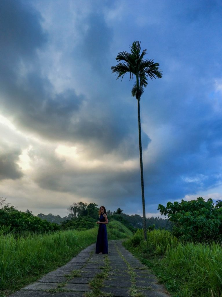 Travel Bug Club на Тропе художника на острове Бали