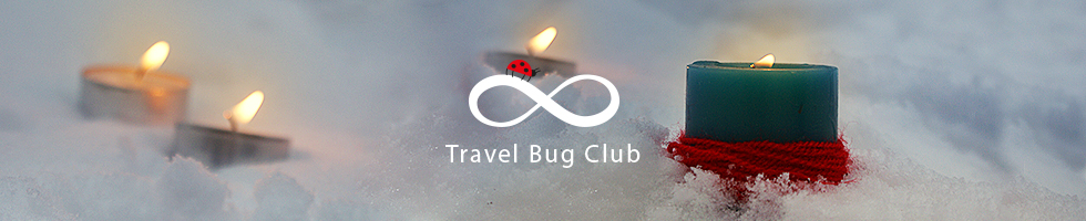 Travel Bug