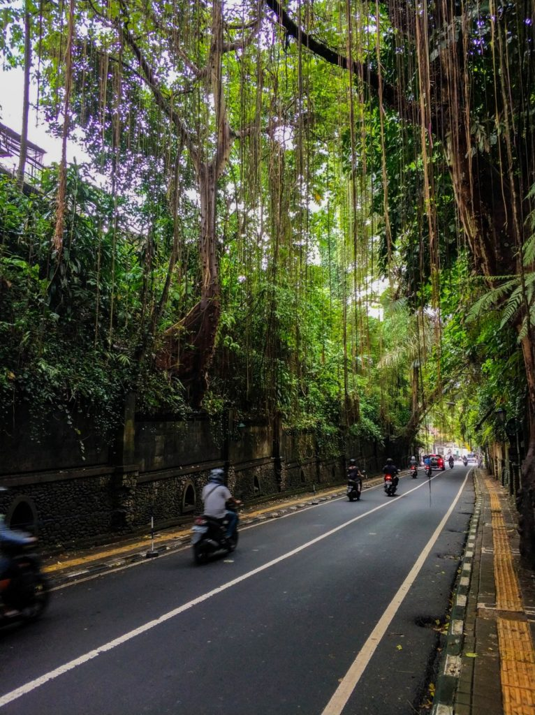 Красивая улица на Бали, Убуд