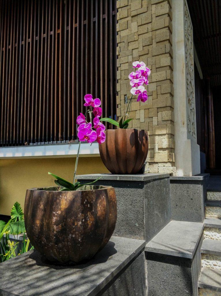 Цветы в горшках у храма на острове Бали