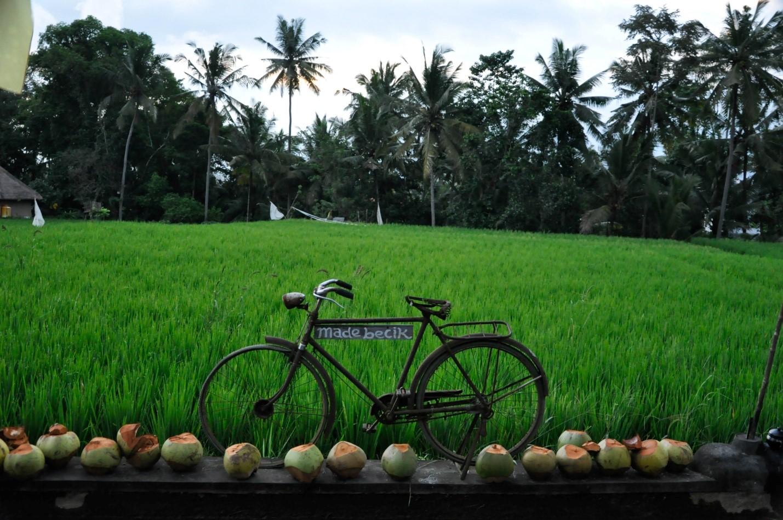 Велосипед на острове Бали