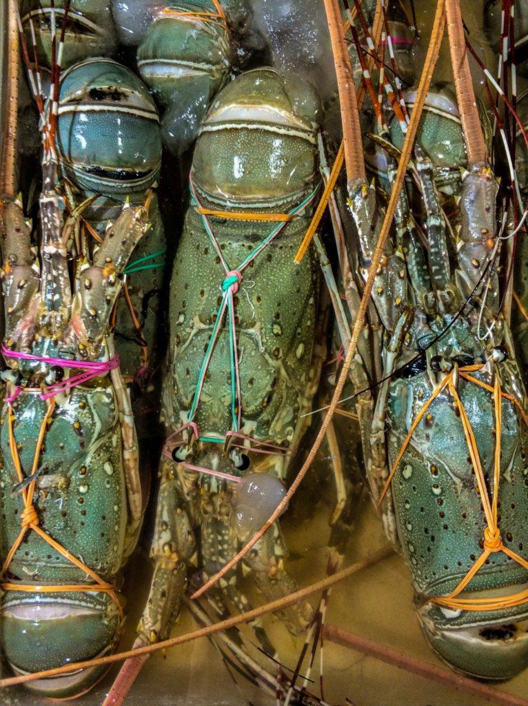 Свежие креветки на рынке Бали