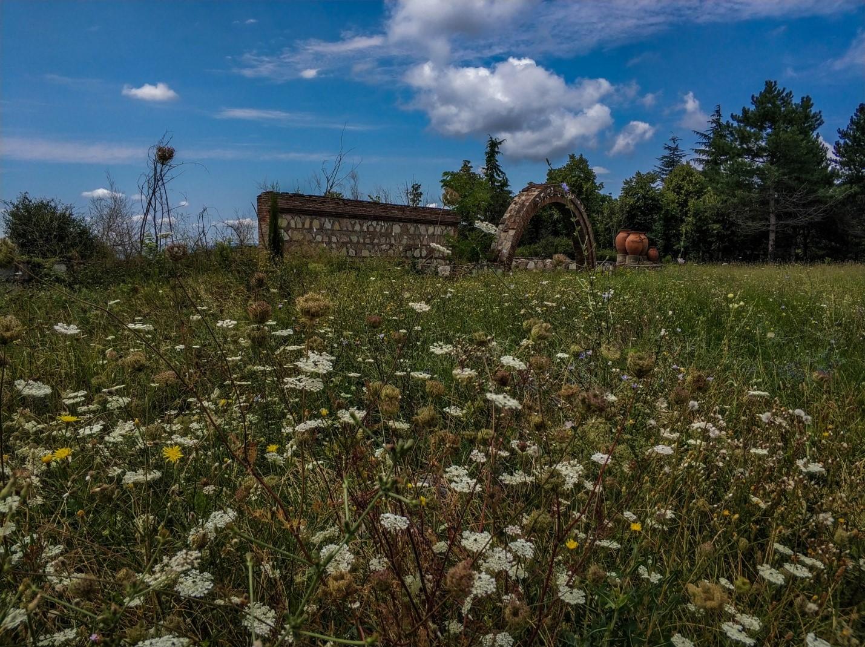 Природа, Кахетия, Грузия