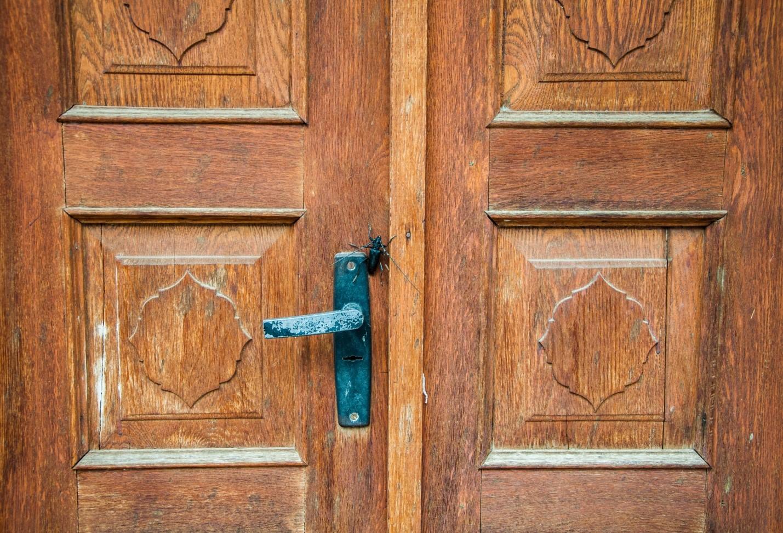 Большой жук на двери